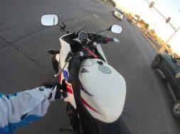 Motociclista eroe, rischia di essere investito per salvare un gatto