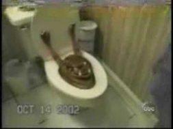 Altro che Freddy Krueger, il terrore esce dal water… Lo scherzo è cattivissimo