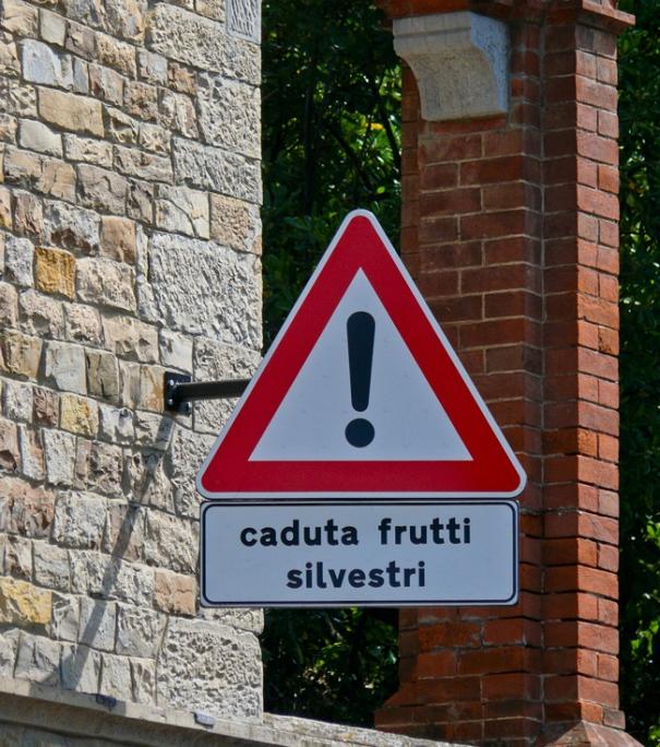 caduta_frutti