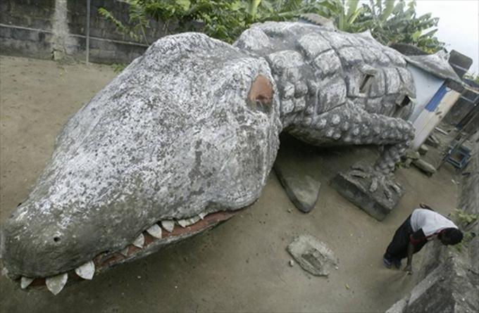 casa-allinterno-di-un-coccodrillo