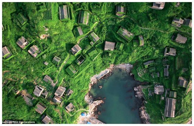 Houtou wan l antico villaggio cinese ricoperto dall edera for Case ricoperte di edera