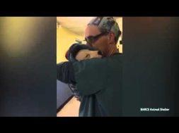 Veterinario coccola cane dopo l'operazione